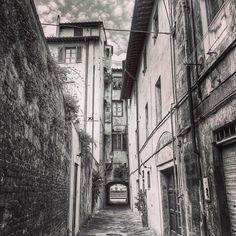 Scorci di Pisa in bianco e nero