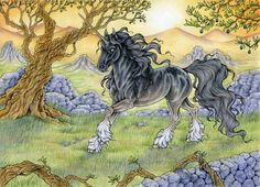 This is my half of an art trade with talented *ReQuay! In this picture there is her gorgeous %Cavitto stallion Thanatos. Magical Creatures, Fantasy Creatures, Beautiful Creatures, Lynda Barry, Elf Warrior, The Last Unicorn, Dragon's Lair, Unicorn Art, Traditional Art