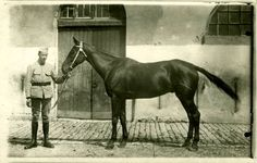 DINAN Carte photo Cavalier du 13ème Régiment de Hussard et son cheval…