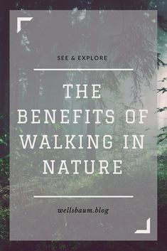 "One of the main benefits of walking in nature is that trees inspire feelings of awe. According to research done by pyschology professor Dacher Keltner at UC Berkeley, awe benefits not only the mind and body but also improves our social connections and makes us kinder.  Spending time outside is also vital as a destressor. One study found that camping gets the stress hormone cortisol back under control. Even sitting near trees at the office help calm us down with ""softly fascinating…"