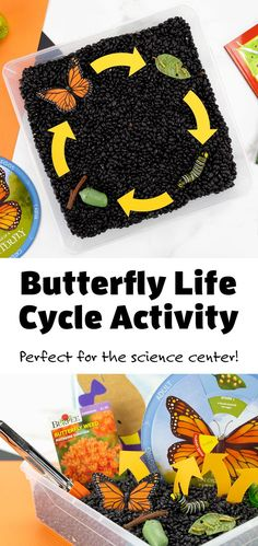 This easy and fun butterfly life cycle activity is perfect for your preschool science center! #preschoolscience #butterflylifecycleactivity #sensorybins #kidsactivity Science Center Preschool, Preschool Learning Activities, Stem Activities, Preschool Crafts, Kids Learning, Science Diy, Science Projects, Creative Activities For Kids, Crafts For Kids To Make