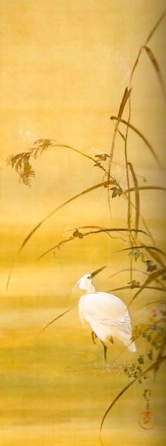 酒井 抱一( 1761年8月1日ー1829年1月4日) Sakai Hoitsu