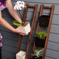 oye pero con una pequeña escalera vieja se podría hacer algo así muy bonito!! - plant ladder!