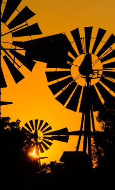 A collection of windmills are silhouetted by the sun.