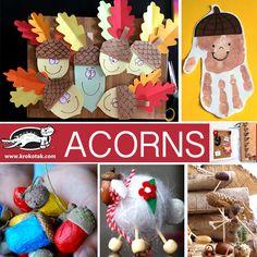 krokotak | ACORNS