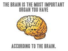 That Damn Brain is So Full of Itself!