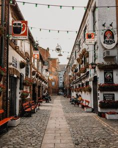 Check out my top 20 things to do in Belfast and the Causeway Coast including culture adventure history great food traditional pubs and lots Belfast Sink Water Feature, Belfast Sink Garden, Ireland Vacation, Ireland Travel, Cork Ireland, Galway Ireland, Ireland Food, Ireland Pubs, Backpacking Ireland
