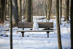 forest friend | snowman