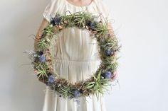 grande wreath // air plant tillandsia // by by peacocktaco on Etsy, $200.00