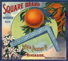 Riverside Square Orange Citrus Fruit Crate Label Advertising Art Print