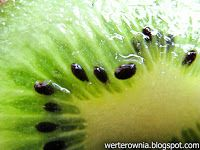 zielone kiwi, #werterownia