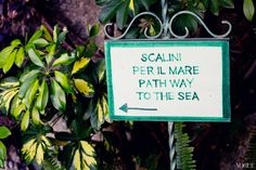 The day after our wedding, all signs pointing to a refreshing swim in the emerald sea!