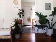 Love these interior plants!  http://ift.tt/1TfAlR6