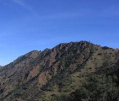 North Peak at Mount Diablo State Park - 10 to 14 miles depending on the route you take