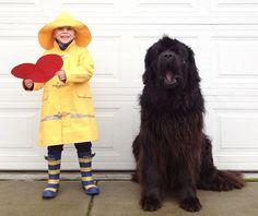 boy+dog