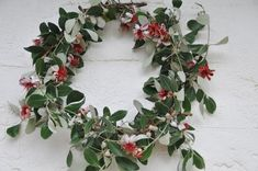 Beautiful flowering feijoa branches made into a wreath. So New Zealand