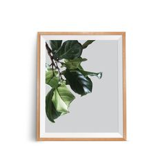 Botanical Wall Poster, Plant Wall Poster, Leaves Wall Poster, Leaves Wall Print, Modern Minimalist Poster, Large Poster Art, Green Print Art by OjuDesign on Etsy