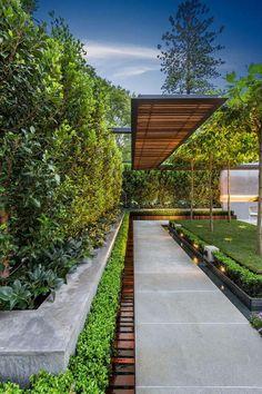aménagement extérieur, allée de jardin et haie vivace