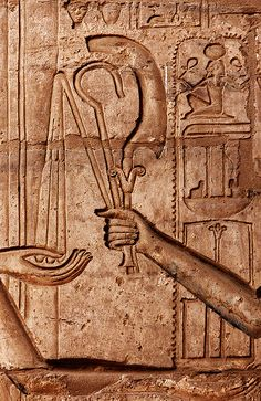 Story Buildings of Egypt :Ramesseum Hand with Staff