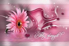 Floral, Flowers, Plants, Pink, Plant, Royal Icing Flowers, Pink Hair, Flower, Flower