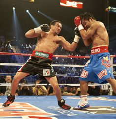 Juan Manuel Marquez - my favorite fighter all-time...one of the best counter punchers in boxing history.....the true boxing fans that are unbiased know whats up jmm beat manny multiple times!