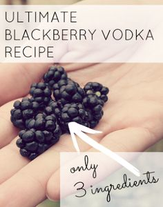 The ULTIMATE blackberry vodka recipe - only needs 3 ingredients and a jar! FAO @Olivia García hunt