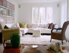 Small Cool Leaderboard: Top 10 Small Small Cool Contest | Apartment Therapy.   The dog
