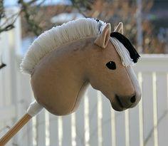 Selfmade hobbyhorse 1/2017