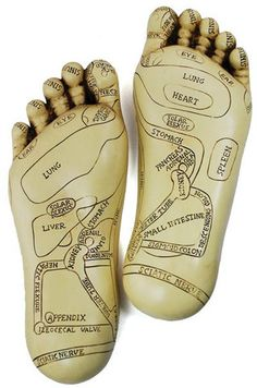 BOUCHA READ IT...................Intended to aid within the practice of Reflexology, this pair of sculpted Reflexology feet is offers a pair of sculpted feet, with the soles marked with the specific points that can be used to help with healing. Great for practice and memorization, they can be laid flat or hung up as a quick reference, helping a practitioner of Reflexology isolate and focus upon those areas that will best aid in the treatment of their patients