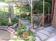 Clay watering pots at Urban Homestead