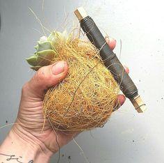 Jeg er vild med Kaja Skyttes Planteplaneter(følg linket for at find en planteplanet forhandler), men som florist skulle jeg have tæv med en kaktus, hvis ikke jeglavede mine egne.Her underdeler jeg kokedamateknikken,så du også kan lave dine egne hængendeplanter. Kokedama betydermosbold på japansk, men denne hængeplante erlavet med kokosfibre (teknikken er den samme) Du skal …