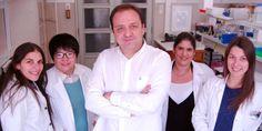 Portugueses descobrem molécula responsável pela doença de Alzheimer | SAPO Lifestyle