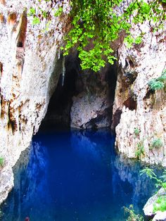 Chinhoyi Caves ~ Zvimba, Mashonaland West, Zimbabwe.... I recently visited Chinhoyi Caves, what an amazing place the water really is that blue :) Can't wait to go back.