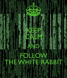 KEEP CALM AND FOLLOW THE WHITE RABBIT - KEEP CALM AND CARRY ON Image Generator - brought to you by the Ministry of Information