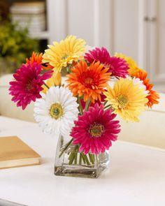 cernter pieces with gerbera daisy | Home > Valentine's Day 2013 > Gerbera Daisy Centerpiece