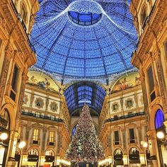 Merry Christmas  to you all and Happy Holidays. Photo by @cristian_btrs ... | http://ift.tt/2b7Z089 shares #travel #destination for #rich #vacation and #holiday. #Get #hotels #Deals at http://ift.tt/2b7Z089