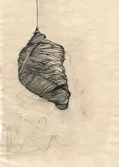 Manon Ferra, cocoon drawing