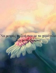 26 ideas for quotes greek posts Advice Quotes, New Quotes, Happy Quotes, Love Quotes, Inspirational Quotes, Sunflowers And Daisies, Wild Flowers, Unspoken Words, Love Truths