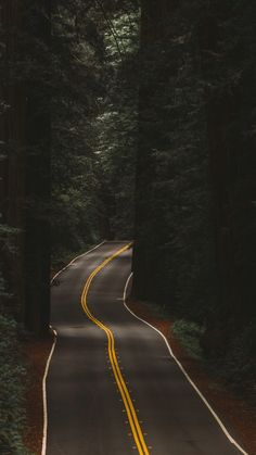 road through the forest Landscape Photography, Nature Photography, Travel Photography, Aerial Photography, Nature Wallpaper, Wallpaper Backgrounds, Forest Wallpaper, Iphone Wallpapers, Beautiful Places