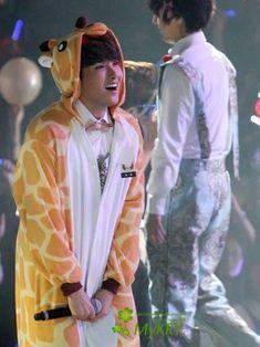 Cute giraffe :3