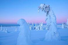 Photo by Tommy Lysakerbakken, Norway (TL photography)