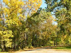 Lindenwood Park Fargo, ND