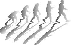 Évolution humaine : Il y a 10 millions d'années, une mutation apparue chez l'ancêtre de l'homme, lui a permis de métaboliser l'alcool éthylique 40 fois plus