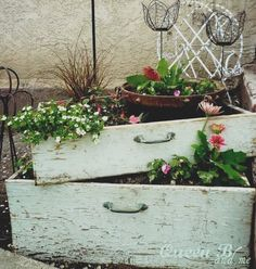 Shabby drawer planters