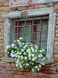 Italian window box