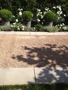 """Closer look at this crushed granite driveway encircled by a concrete border.  """"The designers favorite hardscape material, crushed granite appears throughout the garden, as 'chip seal' in the driveway and loosely compacted for patios and walkways in the rear."""""""
