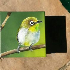 """Japanese white eye birds"". Técnica mixta s/caja de fibrofácil. 2014.  PAZ SANABRIA PECCI"
