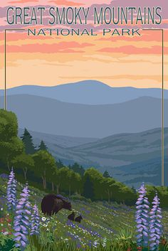 Great Smoky Mountains National Park - Bear and Spring Flowers - Lantern Press Poster