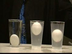 Experiments serve as a great way to teach visual learners. In this science experiment, the students will be observing a lesson about density (materials: eggs, salt, and water). Science Chemistry, Stem Science, Preschool Science, Physical Science, Science Classroom, Teaching Science, Science Education, Science Activities, Life Science