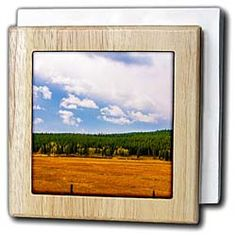 A golden meadow in Wyoming with green trees on a blue sky Tile Napkin Holder